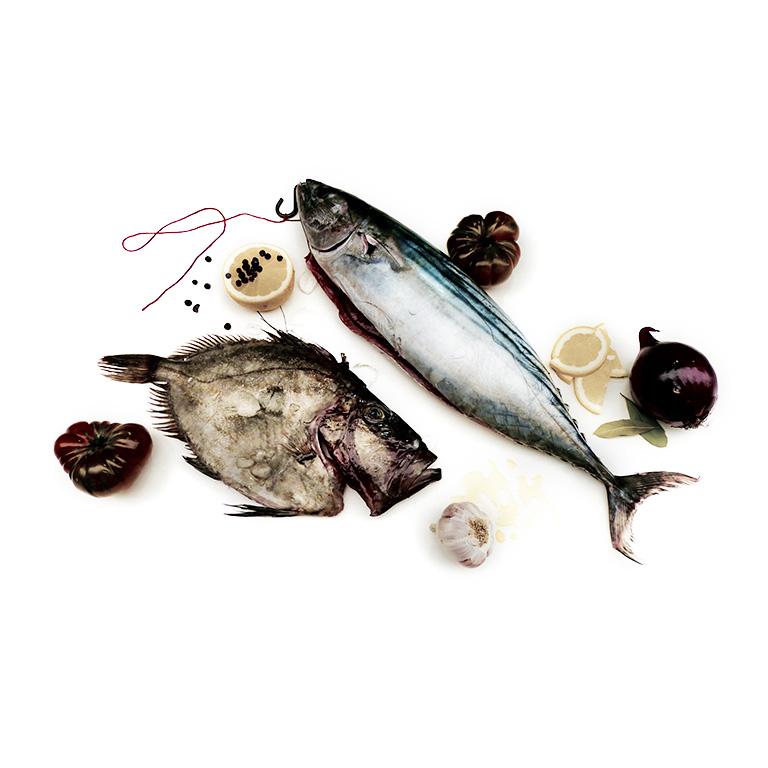 pescado de lonja